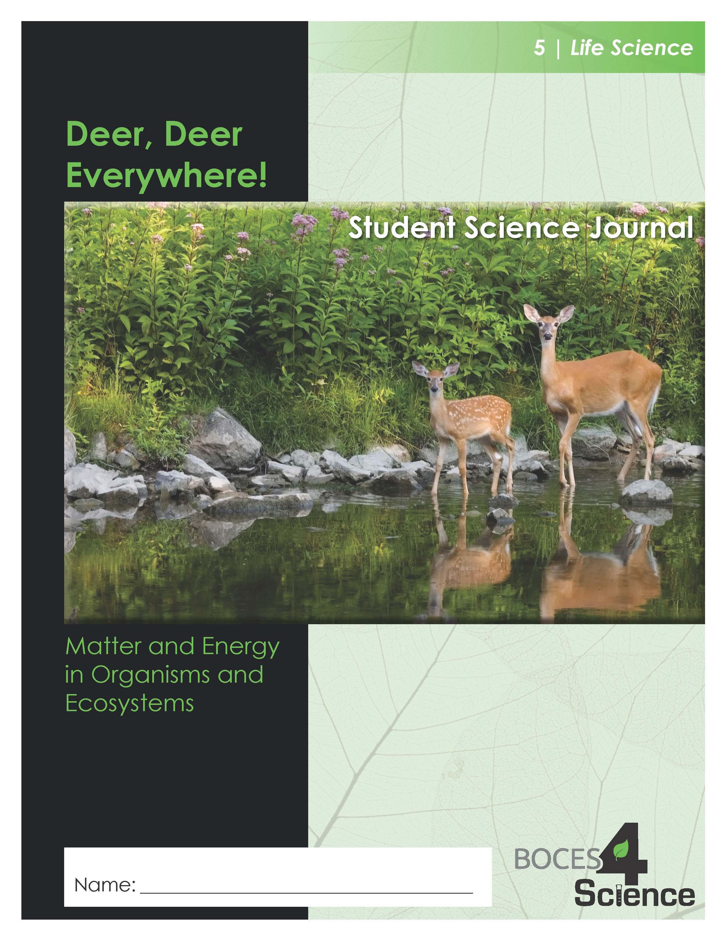 Deer Kit