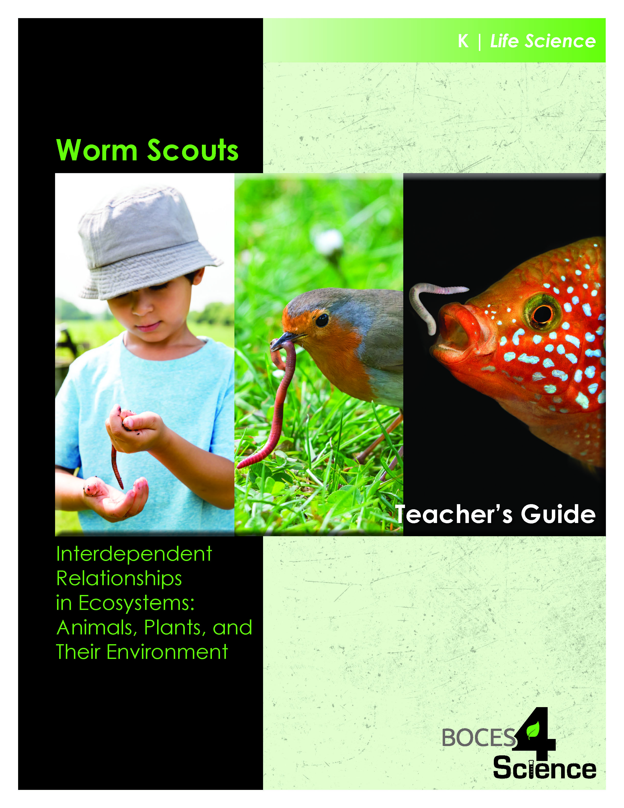 Worm Scouts