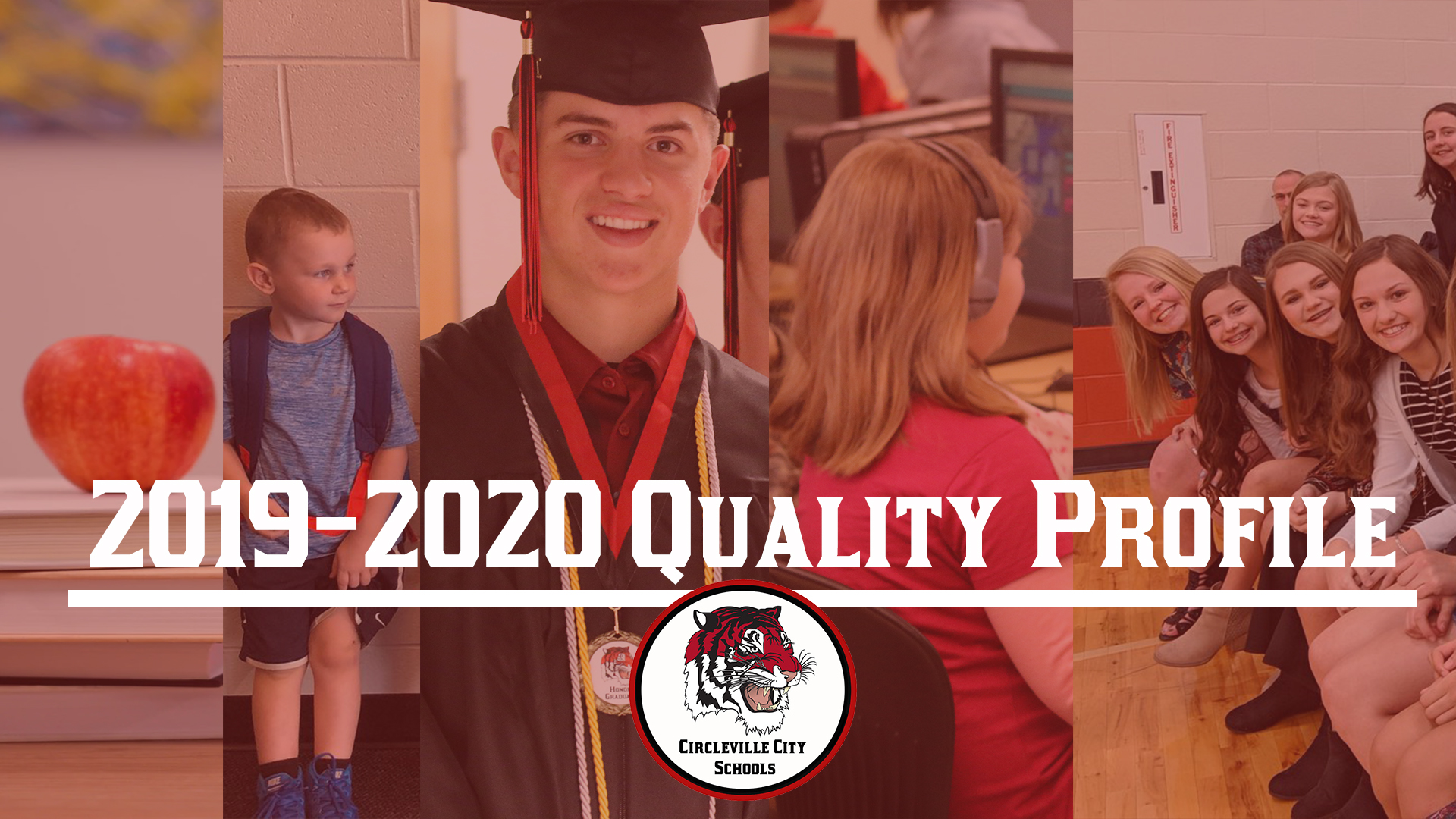 2019-2020 quality profile released