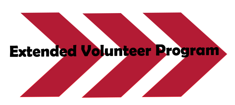 Extended Volunteer Graphic