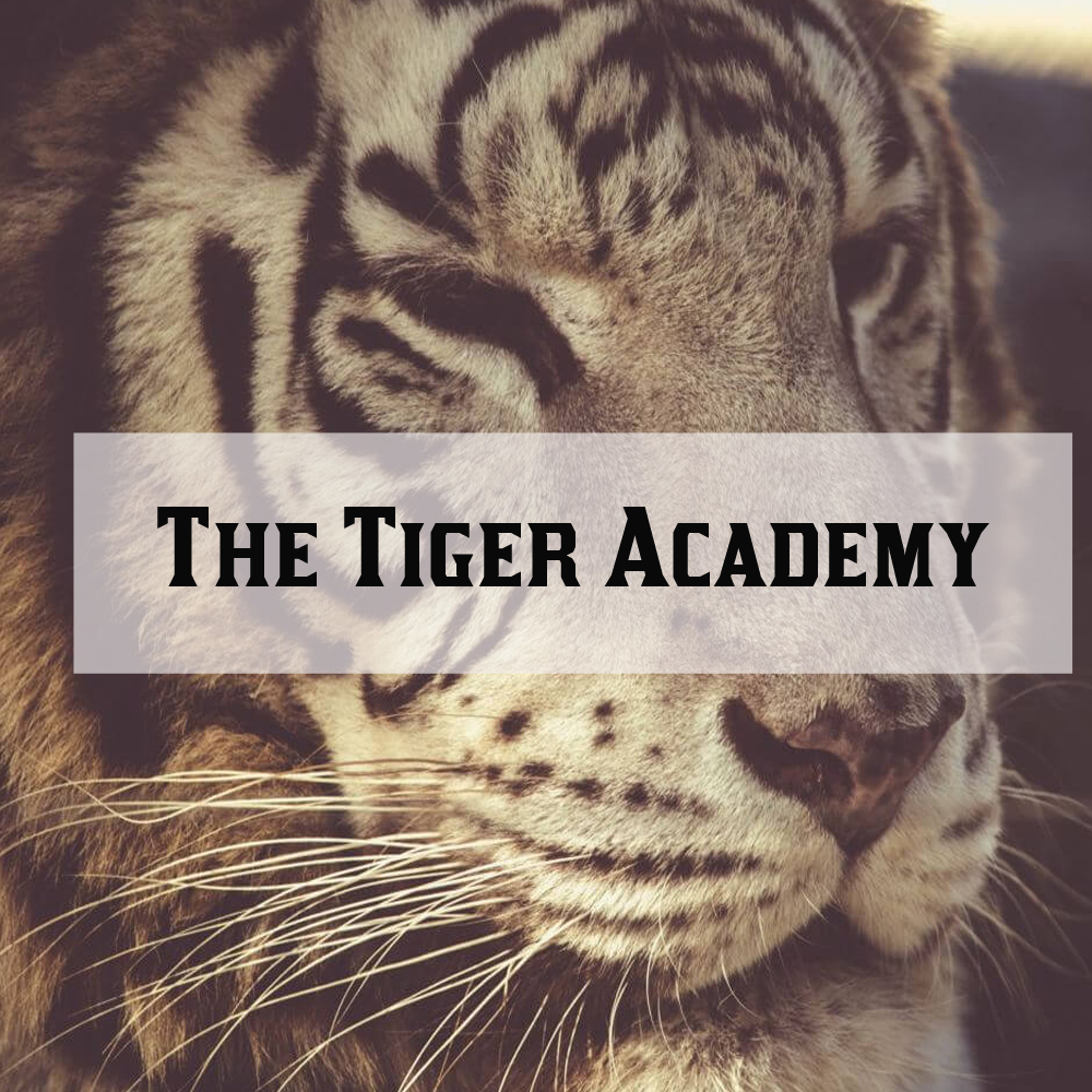 Tiger Academy Professional Development